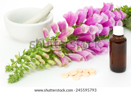 Common foxglove with mortar, pestle and cardiac agents over white background