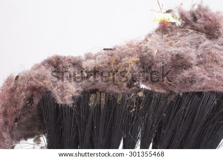 Common house dust on a brush - stock photo