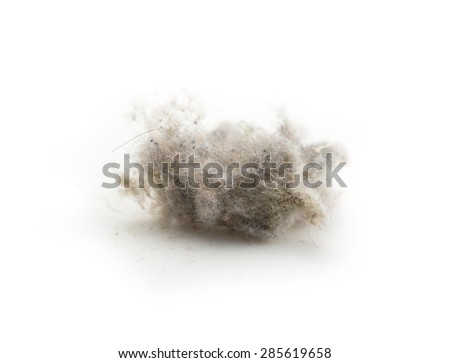 Common house hold dust, high magnification macro, isolated on white.?Shallow depth of focus. - stock photo