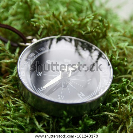 compass close-up in the woods on moss in square - stock photo