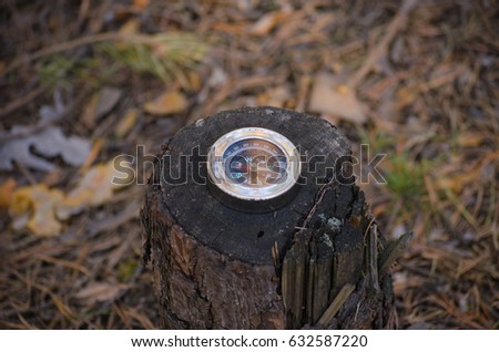 Compass lying on an old stump in the woods