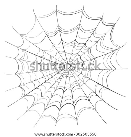 Complicated scary spider web isolated on white - stock photo