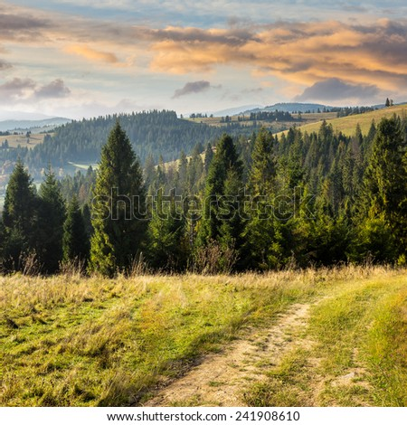composite image of hillside of mountain range with coniferous forest and meadow path in morning light - stock photo