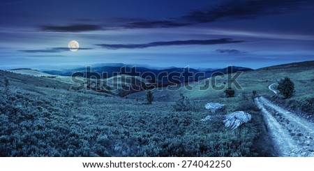 composite image of panoramic mountain landscape.  winding road on hillside meadow, few stones and trees along the road. conifer forest far away on mountains at night in full moon light - stock photo