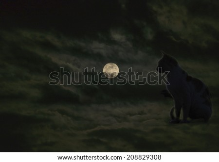Composite image with black cat looking at moon - stock photo
