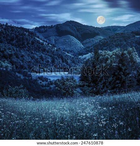 composite mountain summer landscape. pine trees on hillside meadow with wild flowers near the river in mountains at night in full moon light - stock photo