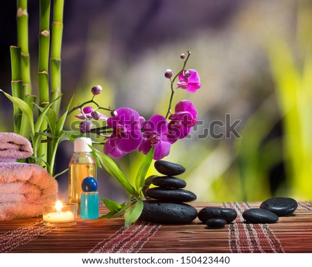 composition bamboo-purple orchid - black stones - garden background - stock photo