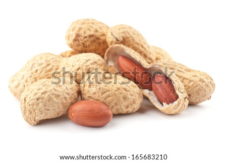 Composition from nuts on the white isolated background - stock photo