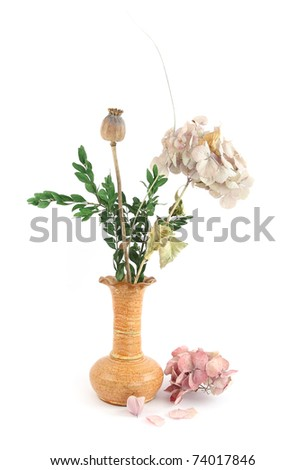 Composition of dry flowers in vase