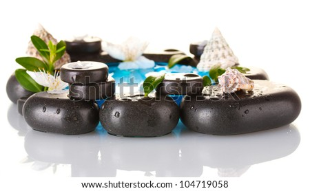 Composition of spa stones, blue water, petals and leaves isolated on white