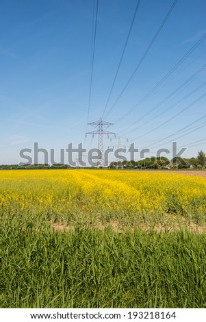 Composition of yellow flowering Oil Seed or Brassica napus, a blue sky and power pylons with high voltage lines. - stock photo