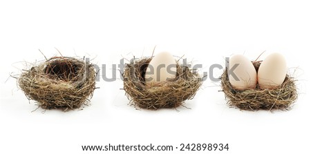 Composition with empty nest and big eggs inside the small nests, isolated on white - stock photo