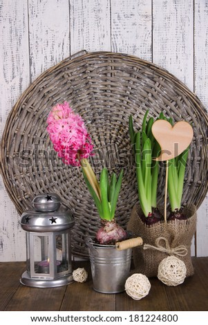Composition with houseplants on table on wooden background
