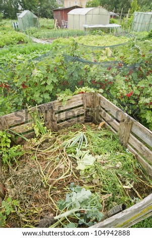Compost bin in a vegetable garden with red currant bushes - stock photo