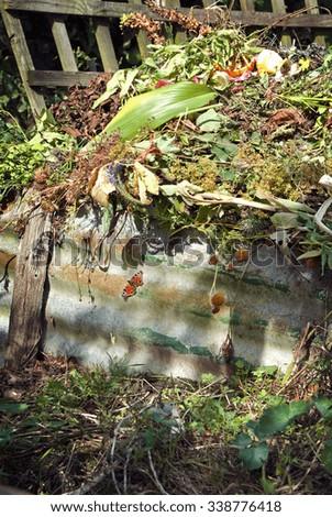 Compost heap in the garden - stock photo