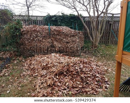 compost pile full of leaves