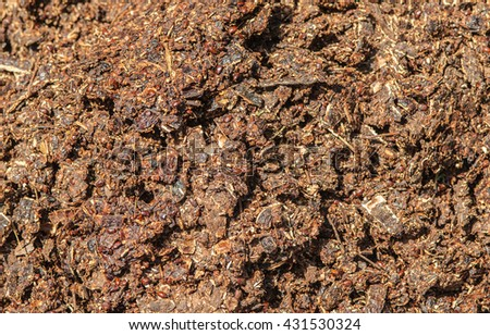 Composting, seed pods from the tree's leaves.  - stock photo