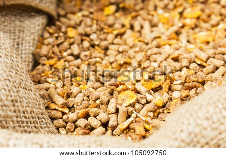 Compound Feed in sacks fodder for  the animals - stock photo