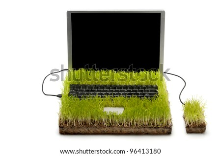 Computer And Mouse Made Out Of Grass on white background. - stock photo