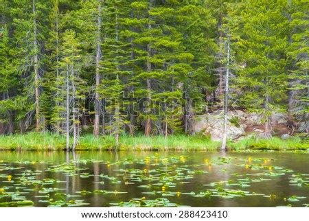 Computer generated artistic image from a photograph of Nymph Lake in the Rocky Mountain National Park. - stock photo