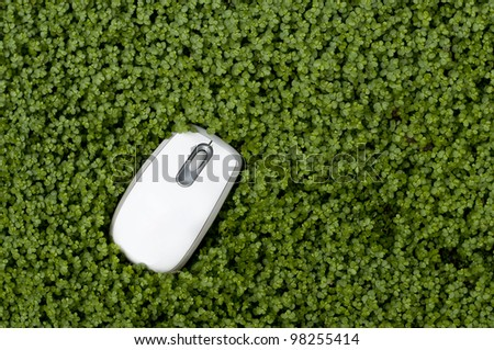Computer mouse sitting in lush green ground cover, lot of room for copy - stock photo