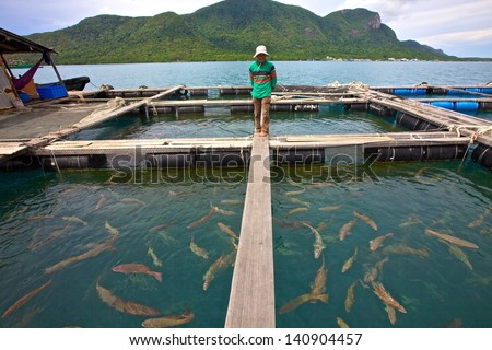 CON DAO, VIETNAM - June 26: A Vietnamese fish farmer surveys his fish nets off Con Dao, Vietnam on June 26, 2010. Vietnam fishing industry seafood export is expected to reach $6.5bl USD by 2015.