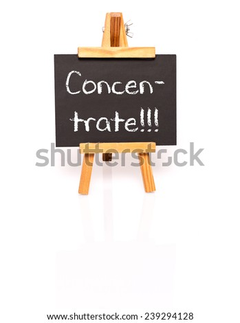 Concentrate. Blackboard with text and easel. Photo on white background with shadow and reflection. - stock photo