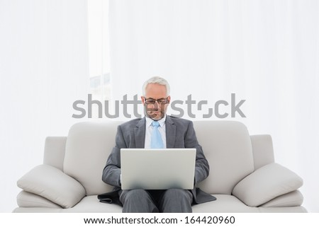 Concentrated mature businessman using laptop on sofa in living room at home