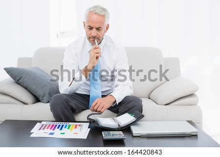 Concentrated mature businessman with graphs and diary sitting in the living room at home