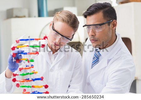 Concentrated scientists working together with dna helix in laboratory - stock photo