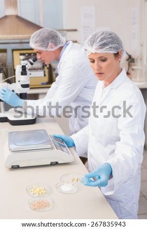 Concentrated scientists working with seeds in laboratory