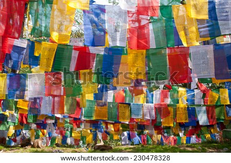 Concentration of numerous colorful Tibetan prayer flags near a temple in Darjeeling - stock photo