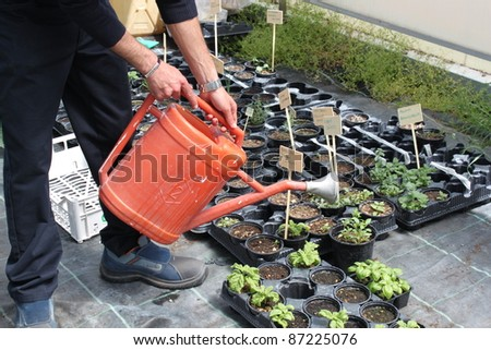 concept a gardener working on the field and greenhouses - stock photo
