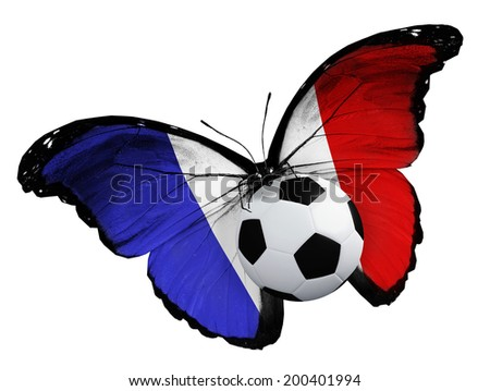 Concept - butterfly with French flag flying near the ball, like football team playing   - stock photo