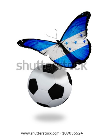 Concept - butterfly with Honduras flag flying near the ball, like football team playing - stock photo