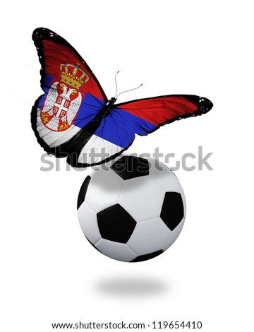 Concept - butterfly with Serbian flag flying near the ball, like football team playing - stock photo