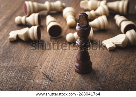 Concept, chess, the. - stock photo