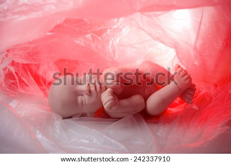Concept embryo, abortion - stock photo
