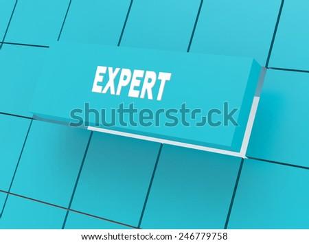 Concept EXPERT - stock photo