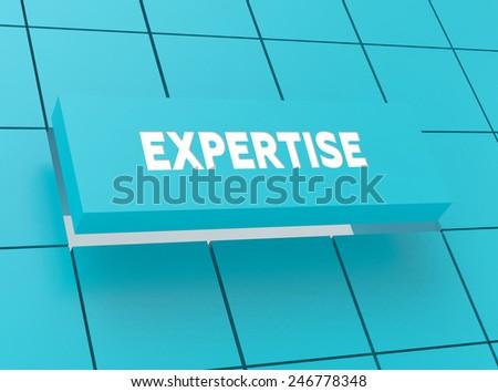 Concept EXPERTISE - stock photo