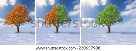 Concept for changes - Collage - Single tree with green and red leaves above the clouds at the idyllic sunny day - stock photo