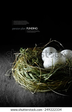 Concept image for financial asset management. White speckled  eggs in a grass bird's nest against a black background. Copy space. - stock photo