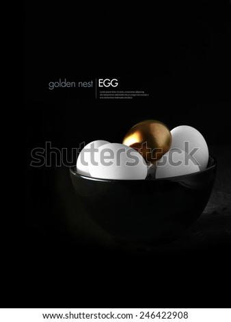 Concept image for pension fund or pension investments. Multiple white eggs with one highlighted gold egg against a dark background. Copy space. - stock photo