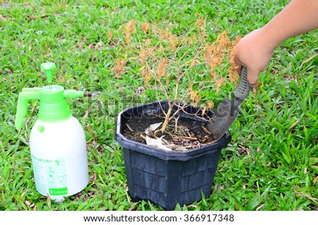 Concept love earth, Help preserve nature  - stock photo