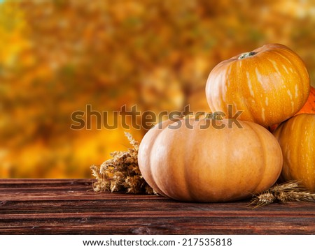 Concept of halloween pumpkins on wooden planks with blur background. - stock photo
