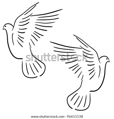 Concept of love or peace. Set of white  doves. Vector version also available in portfolio.