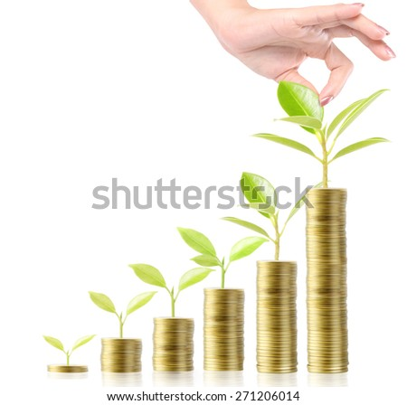 Concept of money tree growing from money - stock photo
