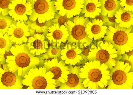 Concept of repeated pattern with yellow flowers - stock photo