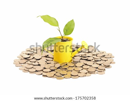 Concept of savings and money tree, isolated on white - stock photo