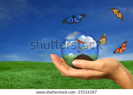 Concept of Taking Care of the Earth With Woman Holding Seedling While Butterflies Fly About - stock photo